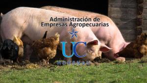 administracion agropecuaria