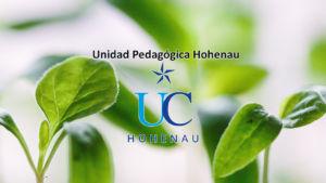Unidad pedagógica hohenau